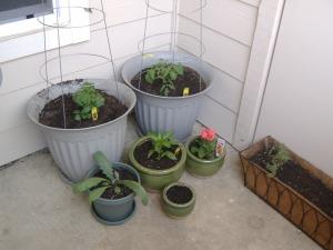 garden-etc-074