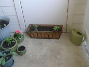 garden-etc-075